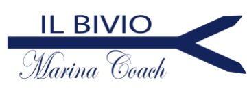 Marina Ionescu  –  Business Coach Cremona – Consulenza Sviluppo Attività Imprenditoriale Cremona